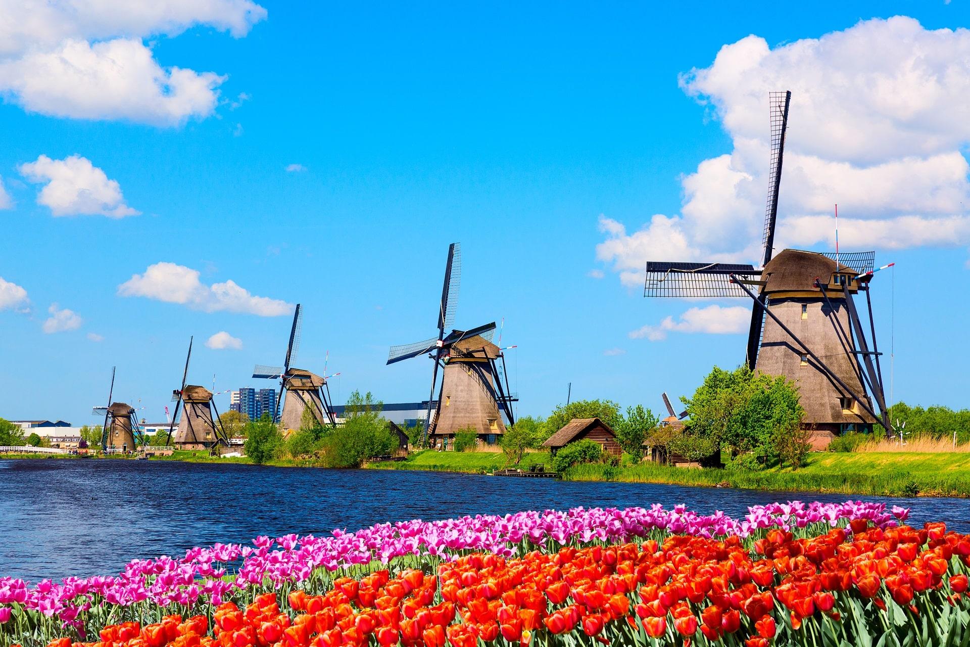 Rotterdam-Windmills